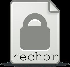 rechorReportIcon